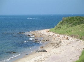 Warming oceans drive east coast fish to cooler waters for Ma fishing license cost