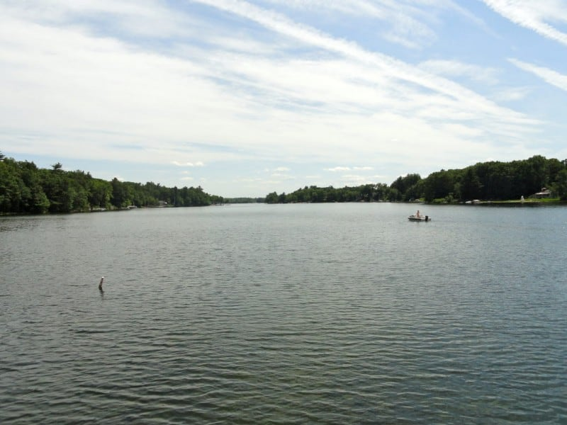 Congamond lake south middle north suffield for Freshwater fishing in massachusetts